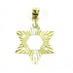 10k Yellow Gold Diamond Cut Star Of David Pendant