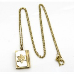 14k Yellow Gold Star Of David Torah Book Pendant