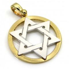 14k Yellow And White Gold Two Tone Small Star Of David Pendant
